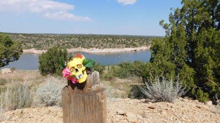Peace Frog (band mascot) at Santa Rosa Lake State Park - NM (Photo by Cali Togo)