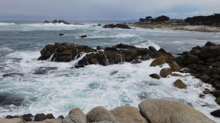 Pacific Grove, CA (Photo by Cali Togo)