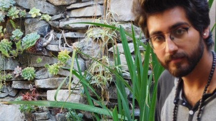 Succulent Wall featuring Alex Ruiz - Wave Street Studios, Monterey, CA (Photo by Cali Togo)