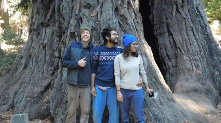 The mother of the forest and us 3 squiggles - Red Basin Redwoods State Park, CA (Photo by Nice Stranger)